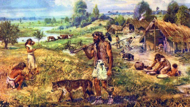 quiz sul neolitico