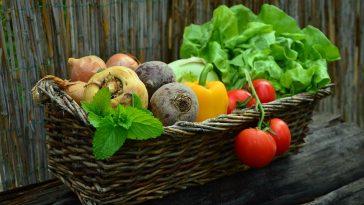 test che verdura sei